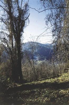 Panoramica dal colle del castello.