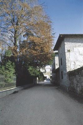 Il viale d'ingresso al complesso castellano.