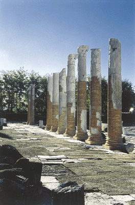 Foro con le colonne rialzate e ripristinate nell'immediato secondo dopoguerra.