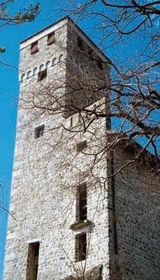 Veduta delle torri del castello