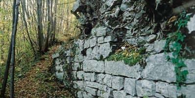 Ruderi del castello superiore
