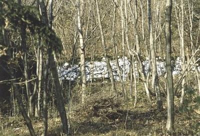 Altri resti di muraglia