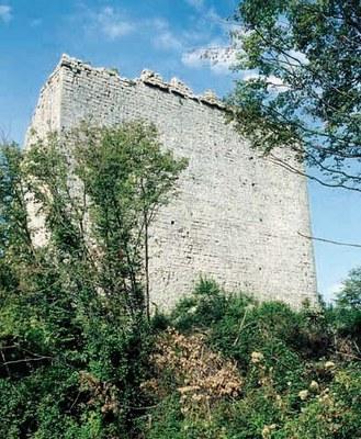 Resti delle strutture murarie del castello.