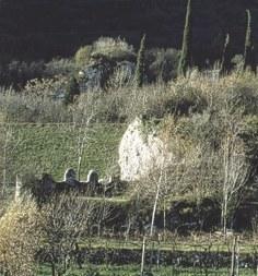 Resti murari del bastione.