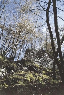 I resti del castello sul colle Budin.