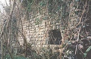 Immagine dei resti del castello