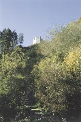 La Torre Picotta.